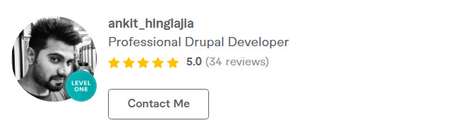drupal theme developer